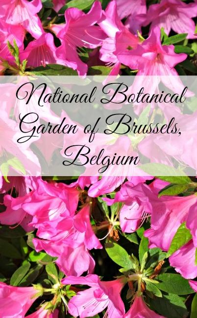 national-botanical-garden-brussels-Belgium