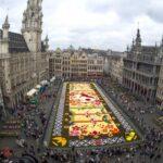 Брюссельcкий цветочный ковер 2016 – 20-й выпуск