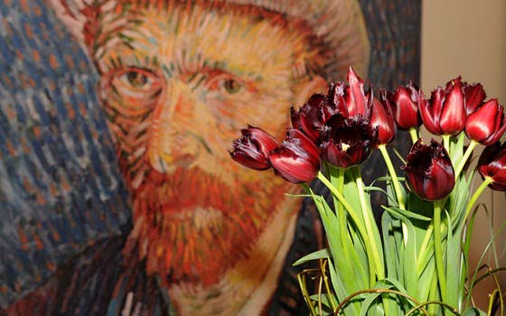 45617_fullimage_van gogh tulpe und portrait keukenhof