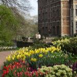Floralia Brussels – выставка цветов