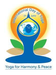 IDY_Logo_in_English(1)