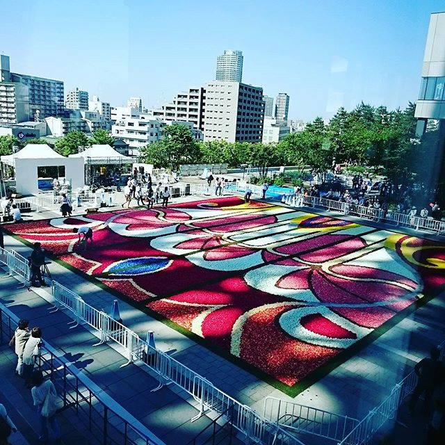 Brussels-flower-carpet