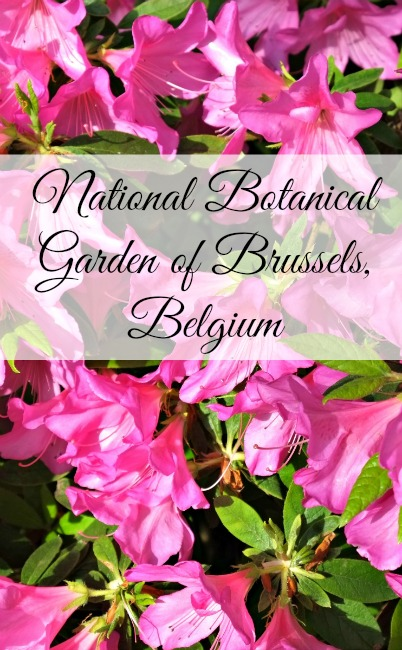 national-botanical-garden-brussels-Belgium