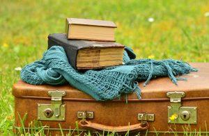 luggage-1482693_960_720