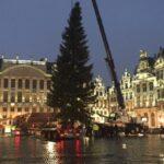 Рождественская елка для Гран-плас из Словакии