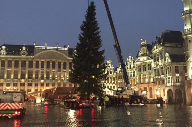 Christmas-tree-Grand-Place